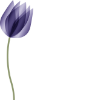 The Bereavement Register